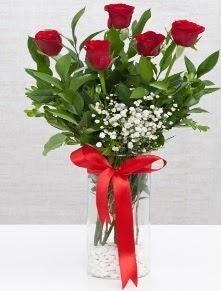 cam vazo içerisinde 5 adet kırmızı gül  İzmit çiçek gönderme sitemiz güvenlidir
