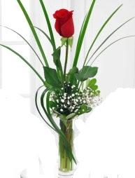 Cam içerisinde 1 kırmızı gül  İzmit online çiçek gönderme sipariş