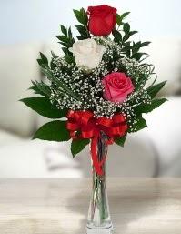 Camda 2 kırmızı 1 beyaz gül  İzmit hediye sevgilime hediye çiçek