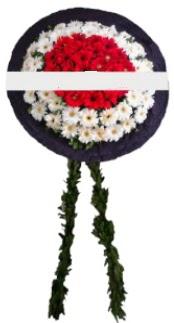 mozele çiçeği  İzmit çiçek satışı