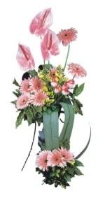 İzmit çiçek siparişi sitesi  Pembe Antoryum Harikalar Rüyasi
