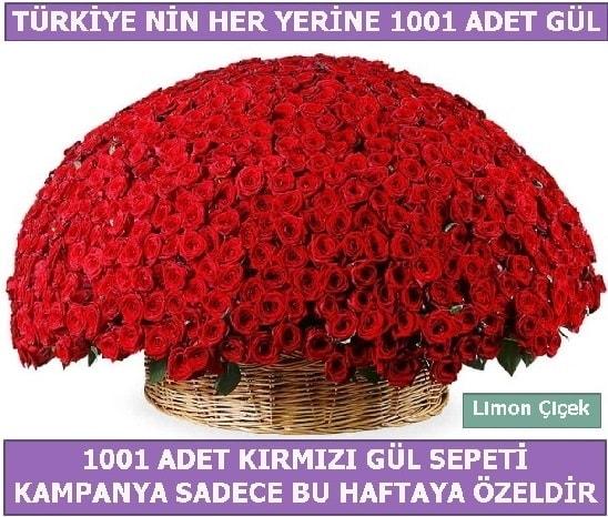 1001 Adet kırmızı gül Bu haftaya özel  İzmit çiçek siparişi vermek