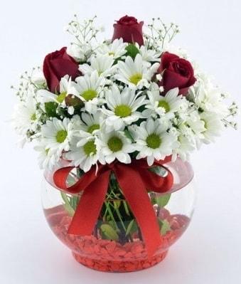 Fanusta 3 Gül ve Papatya  İzmit kaliteli taze ve ucuz çiçekler