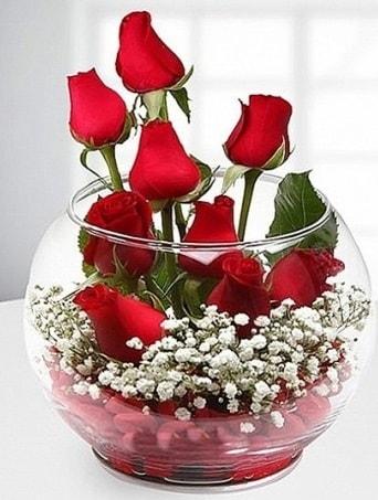 Kırmızı Mutluluk fanusta 9 kırmızı gül  İzmit çiçek mağazası , çiçekçi adresleri