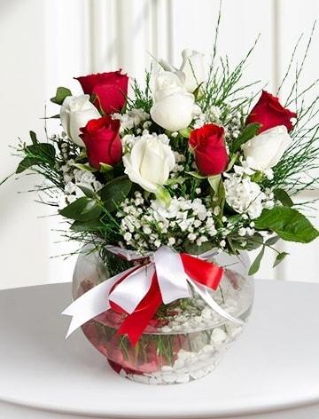 Aşk Küresi  5 beyaz 5 kırmızı gül fanusta  İzmit kaliteli taze ve ucuz çiçekler