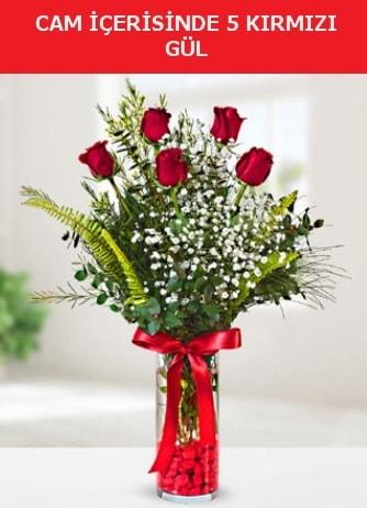 Cam içerisinde 5 adet kırmızı gül  İzmit çiçek mağazası , çiçekçi adresleri
