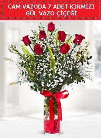 Cam vazoda 7 adet kırmızı gül çiçeği  İzmit online çiçek gönderme sipariş