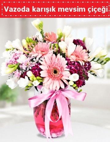 Vazoda karışık mevsim çiçeği  İzmit anneler günü çiçek yolla