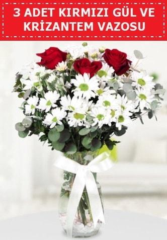 3 kırmızı gül ve camda krizantem çiçekleri  İzmit cicekciler , cicek siparisi
