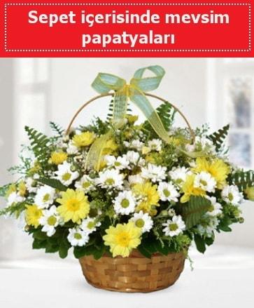 Sepet içerisinde mevsim papatyaları  İzmit hediye sevgilime hediye çiçek