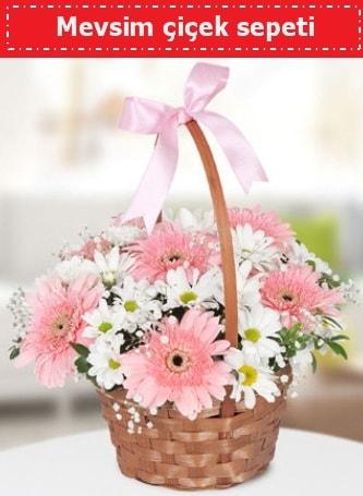 Mevsim kır çiçek sepeti  İzmit anneler günü çiçek yolla